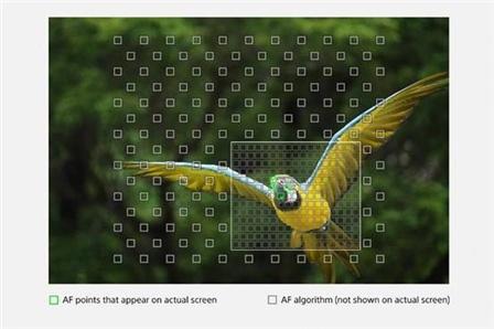 索尼: 增强对焦与连拍索尼黑卡RX10M4黑科技再升级